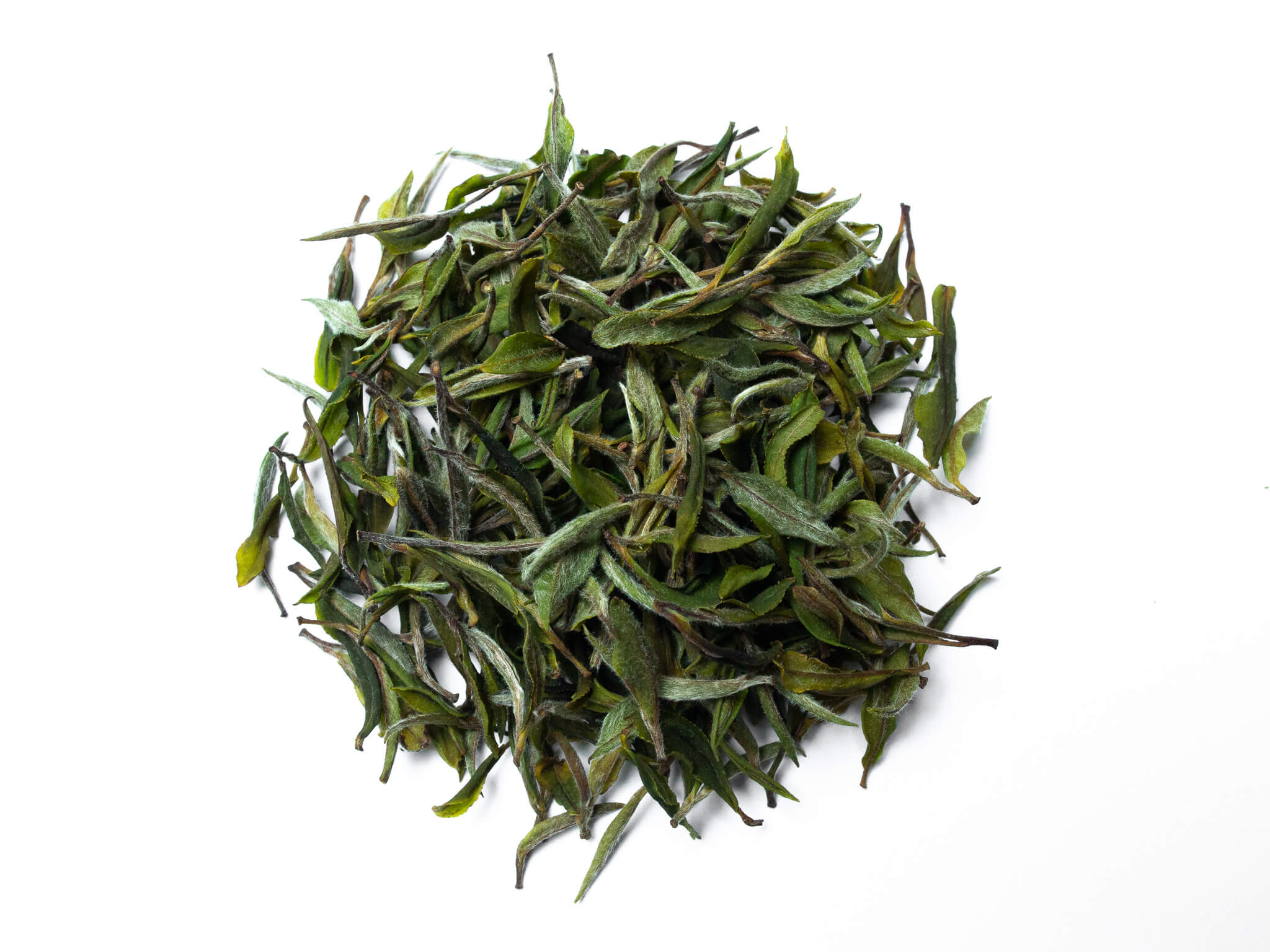 cold spring white tea