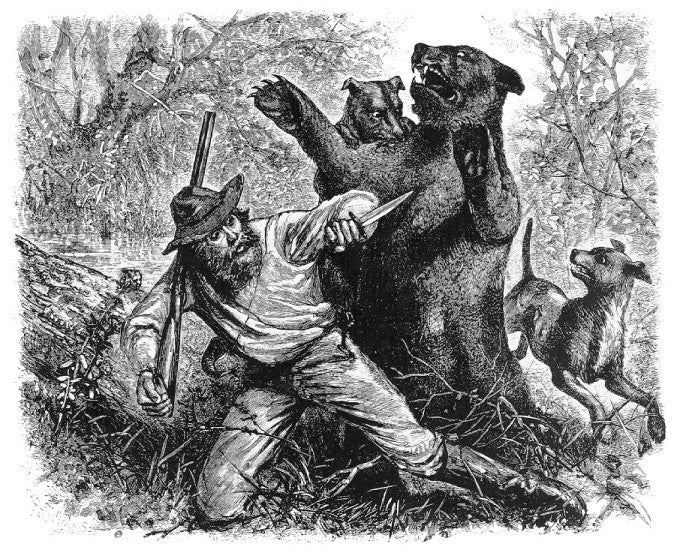 hugh glass attached by a bear illustration