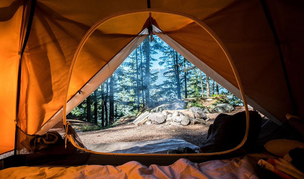 camping forest wanderlust