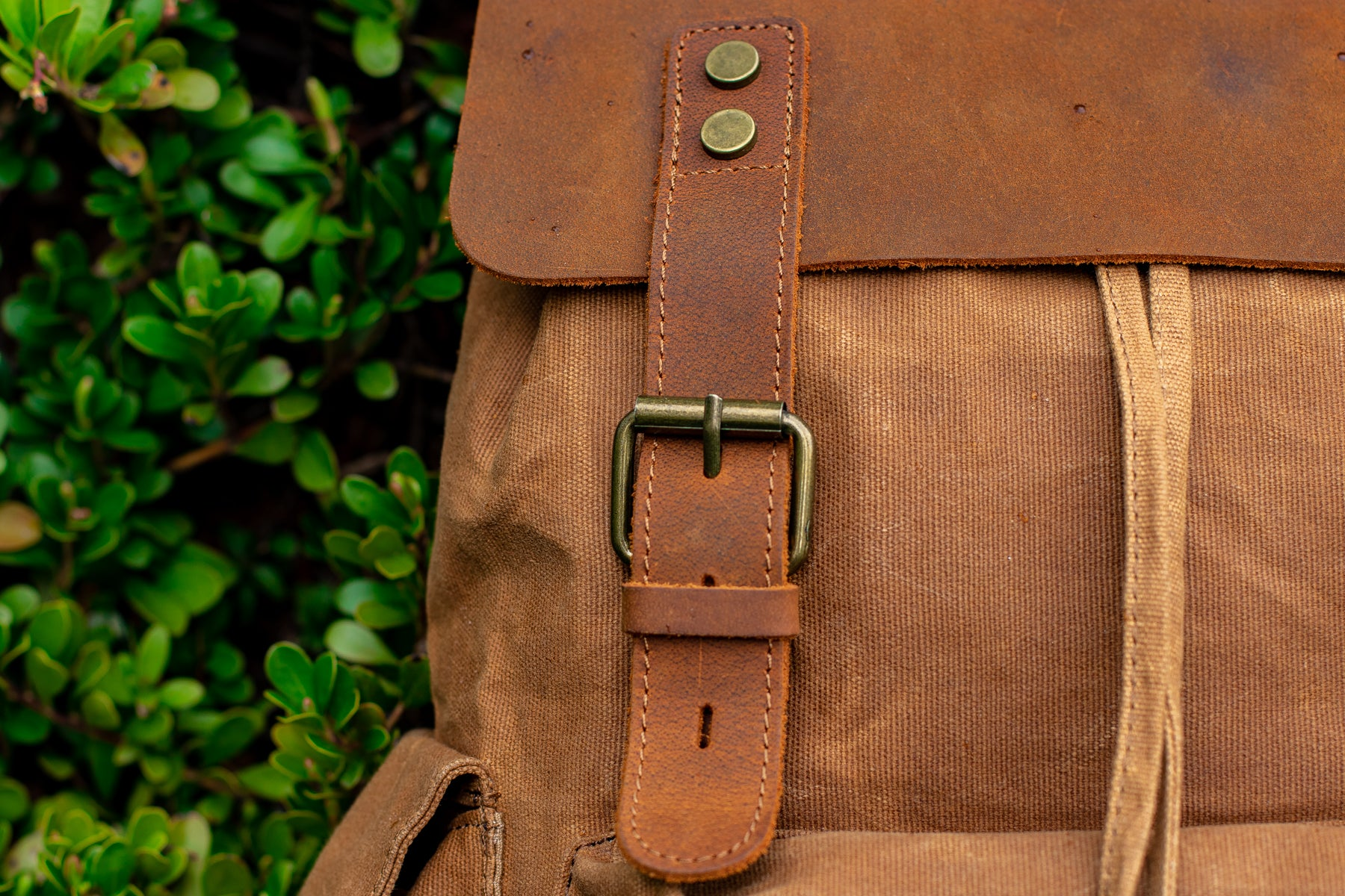 close up view of the gold tone brass buckle hardware of the waxed canvas backpack