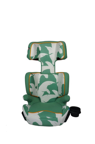 AIDIA Explorer 2-in-1 Safety Booster Car Seat, Madagascar