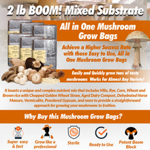 6 Pack--2lb BOOM! Mixed Substrate All in one Mushroom Grow Bags- Unique Nutrient Mix Substrate Mushroom Grow Bags | Super Easy to Use | High Success Rate | Versatile Use