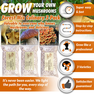 Forest Mix Culinary 3 Pack Dry Spores Outdoor Cultivation Mushroom Grow Kit