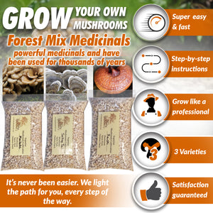 Forest Mix Medicinals 3 Pack Dry Spores Outdoor Cultivation Turkey Tail, Maitake, Reishi