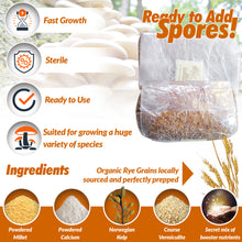 RYE Grain Spawn Grow Bags * Rye Berries, Trays and Bulk Grows * Ready to Add Spores!