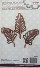 Creative Expressions Craft Dies by Sue Wilson Finishing Touches - Fern Trio 3 Dies