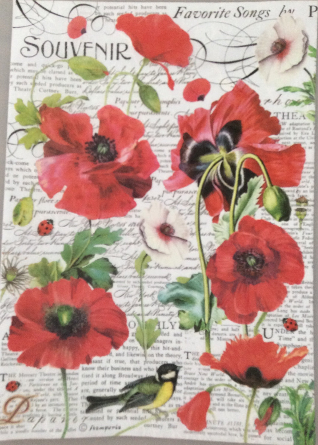 Stamperia Decoupage Rice Paper A4 Poppies & Bird