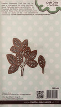 Creative Expressions Craft Dies by Sue Wilson Finishing Touches - Faux Quilled Leaves 2 Dies