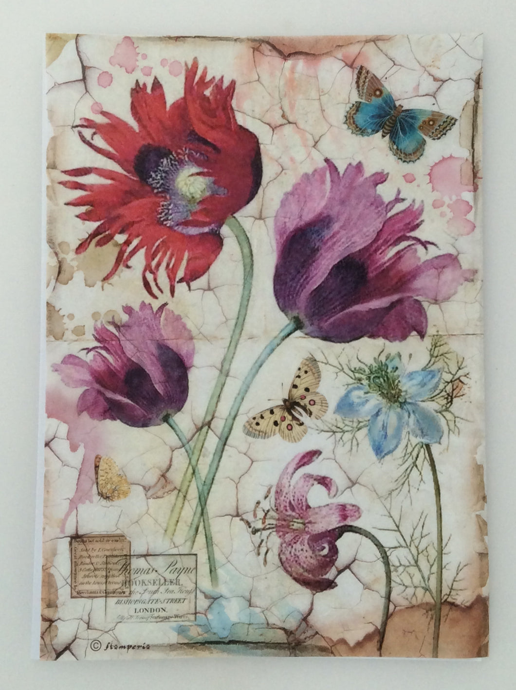 Stamperia Decoupage Rice Paper A4 Wild Tulip