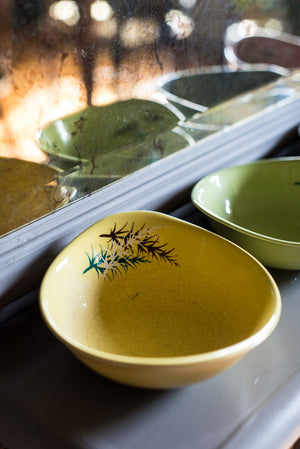 Coloured vintage leaf-motif bowls