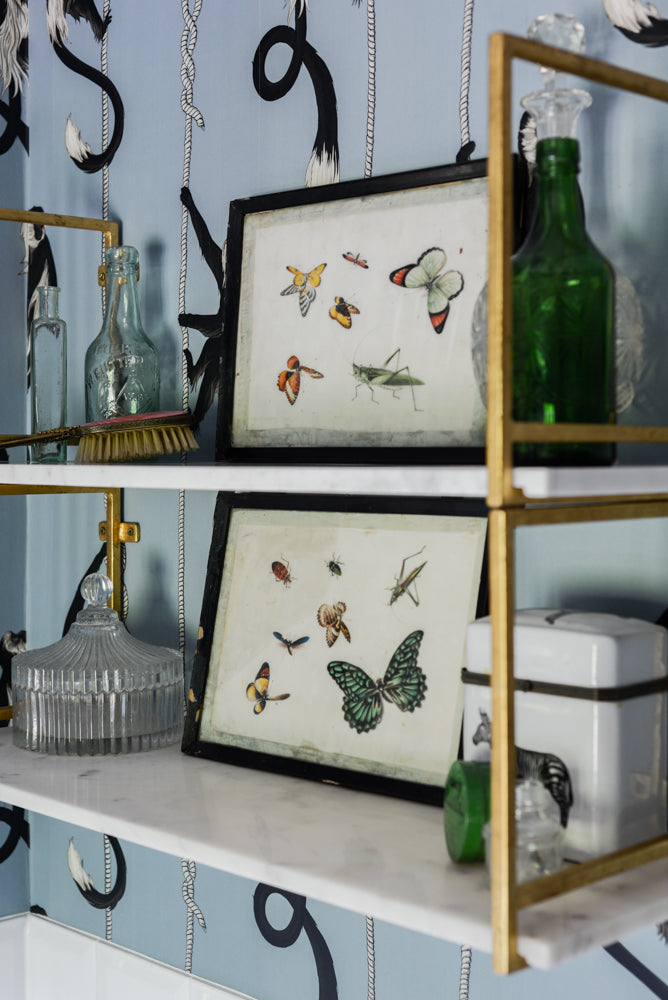 Pair of exquisitely hand-painted framed insect paintings on rice paper from circa 1900