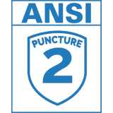 ANSI Pucture Level 2