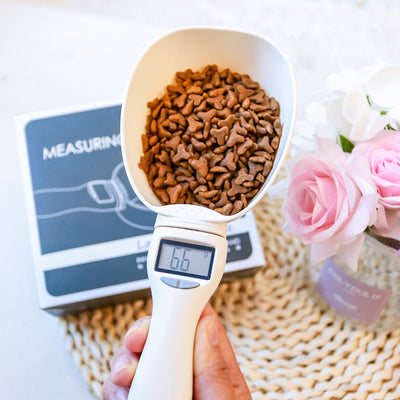Food Measure Spoon