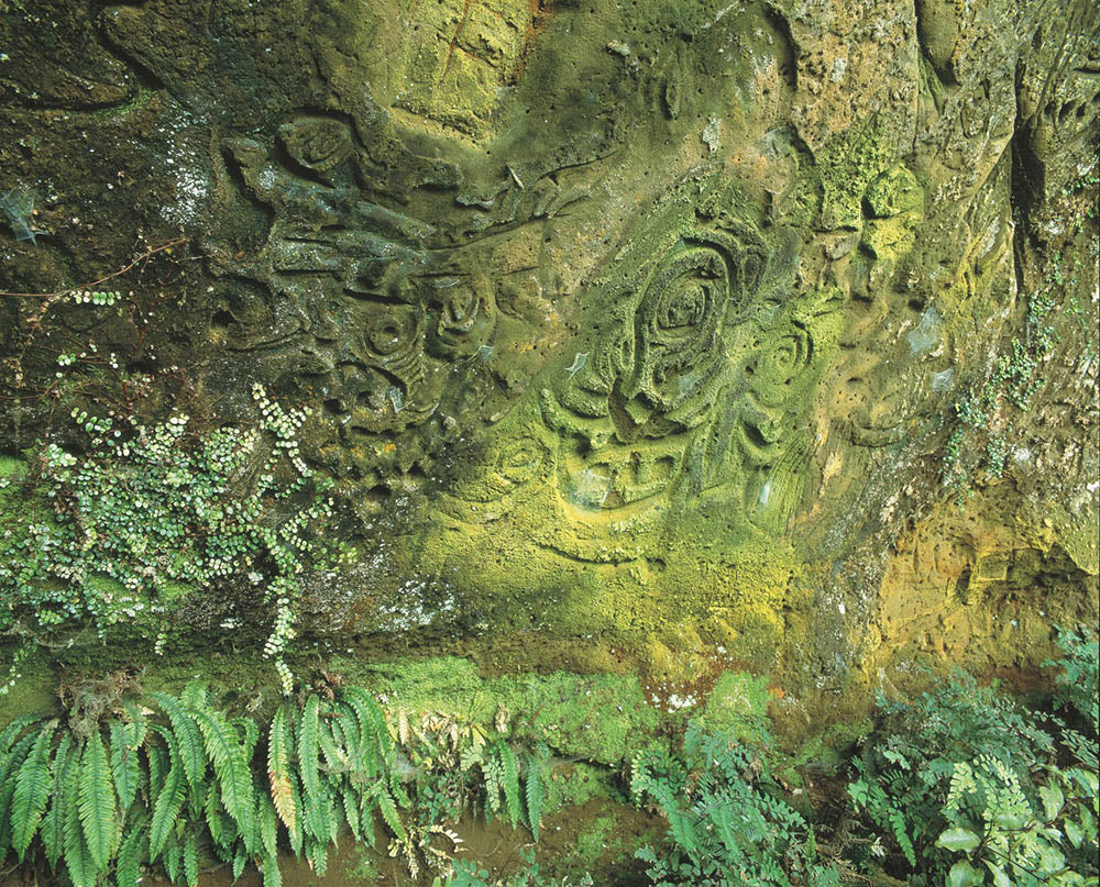 Maori Petroglyphs Carvings New Zealand