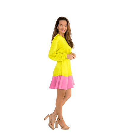 Color Block Flared Dress - Lady Jetset
