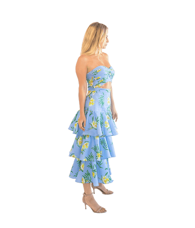 Roxy Dress - Lady Jetset