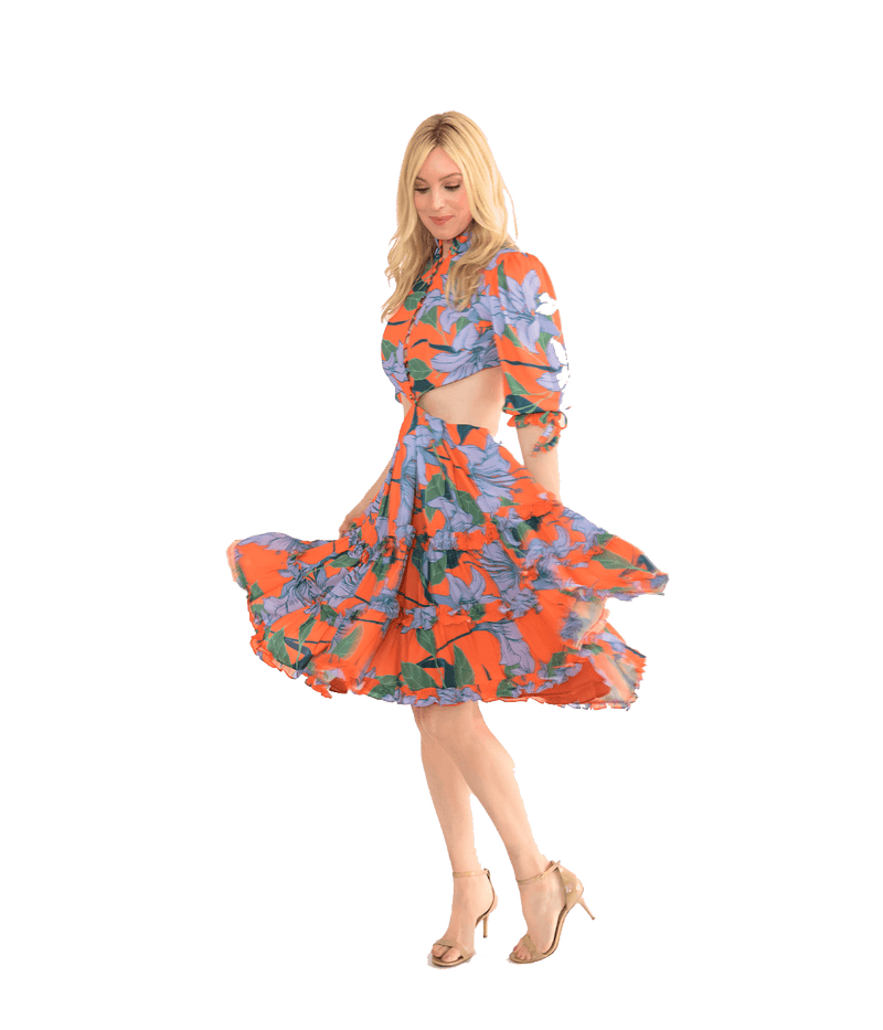 Jazmin Dress - Lady Jetset