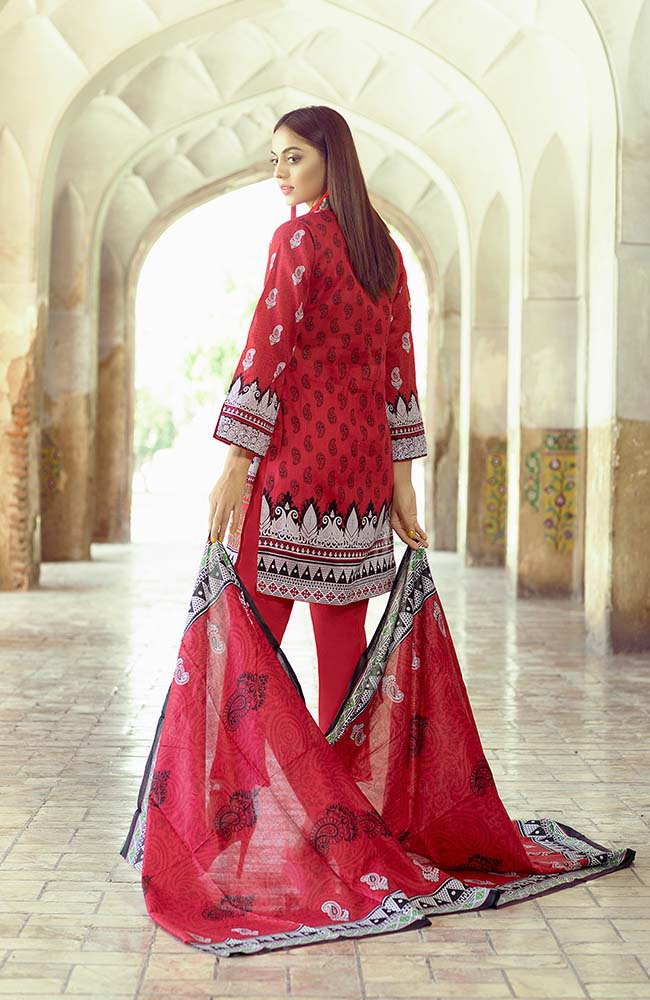 AN19L3 01C Anum Lawn Vol 3 2019