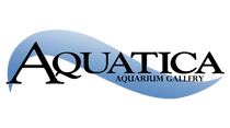 Aquatica Superstore