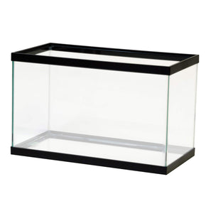 Aqueon Glass Aquarium (Standard) - Aquatica Aquarium Gallery Fish Store Cleveland Ohio