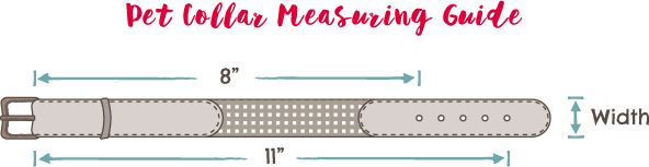 Pet Collar Measuring Guide