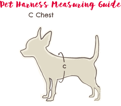 Pet Harness Measuring Guide