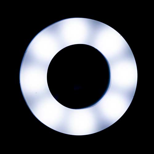 12mm LED Ring, White