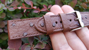 Ostrich Watch Strap 20 mm