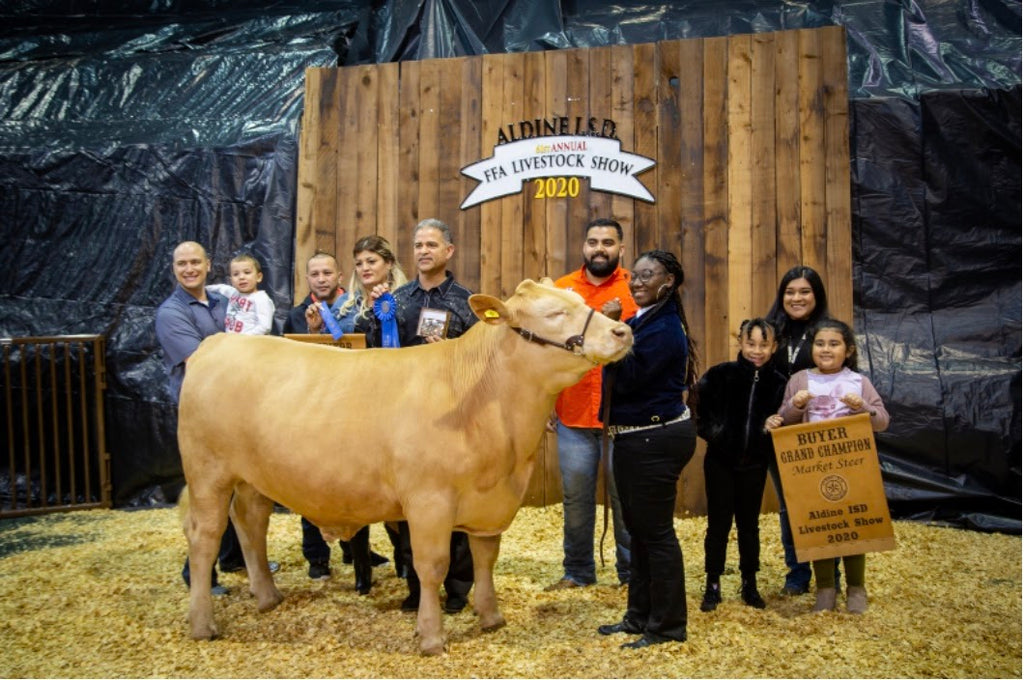 Texas High School Student Makes History By Winning Grand Champion Prize With Her Steer