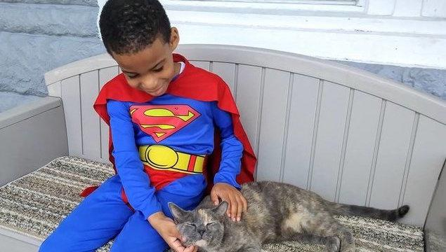 This 5-Year-Old Has A Passion For Rescuing Street Cats (And Sometimes Wears A Superhero Outfit To Do It)
