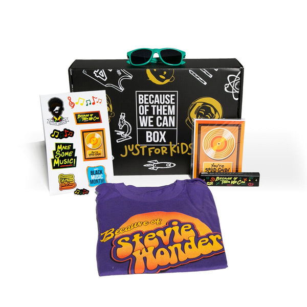 Stevie Wonder Box