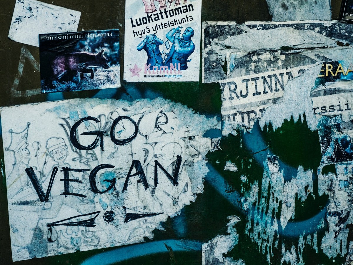 World Vegan Month. Veganism now and then; how has the movement changed and what improvements have been made?