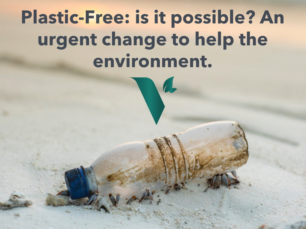 Plastic-Free: is it possible? An urgent change to help the environment.