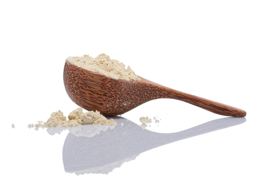 Load image into Gallery viewer, Vitally Vegan Protein Coconut Scoop