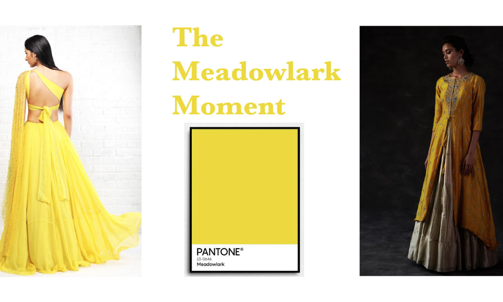 Colour of the month: Meadowlark