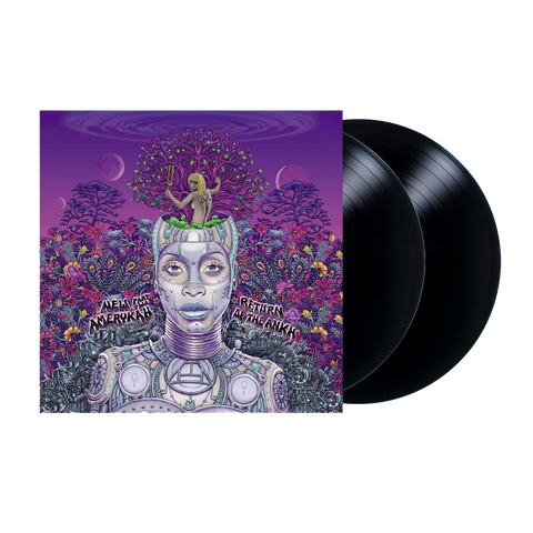 Erykah Badu, New Amerykah Part Two (2LP)