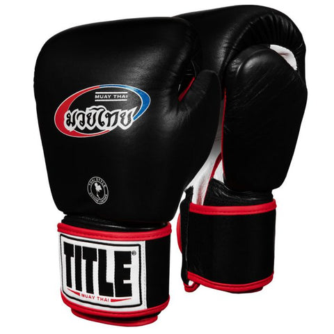 TITLE Muay Thai Leather Training Gloves