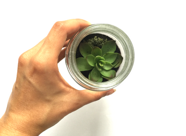HOW TO GREEN YOUR SPACE: DIY TERRARIUM TUTORIAL