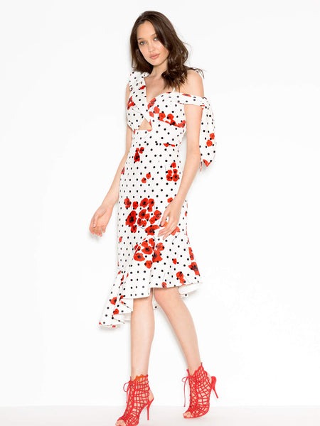 Poppy Dot Dress (For Hire)