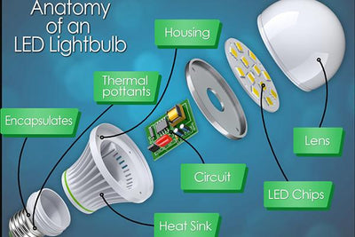 The Anatomy of an LED Light Bulb [INFOGRAPHIC]