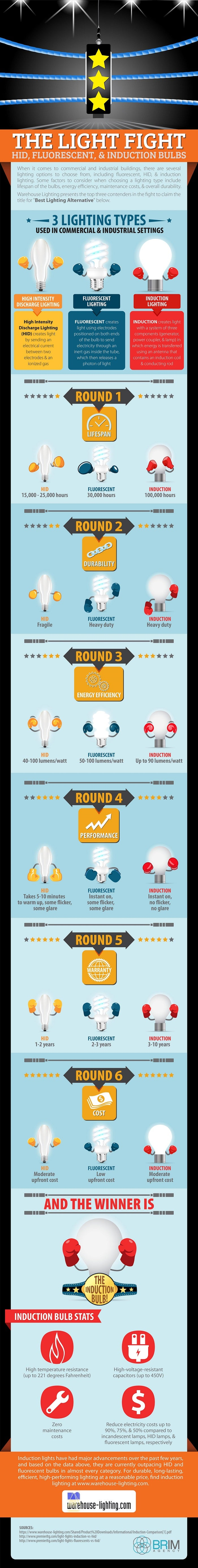 The Light Fight HID, Fluorescent, & Induction Bulbs [INFOGRAPHIC]