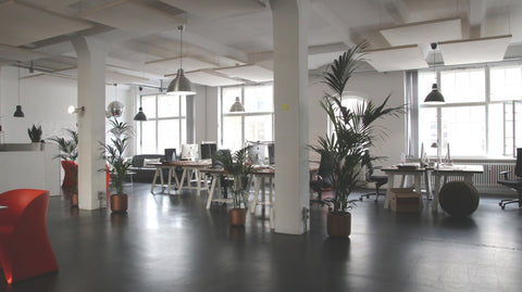 Shared Office Space Lighting