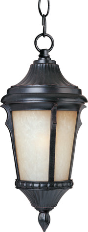 Odessa Cast 1-Light Outdoor Hanging Lantern  - Image #1