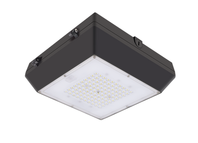LED Canopy Light, 80 watt