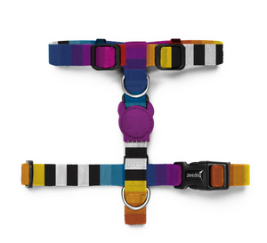 Zee.Dog Prisma H Harness