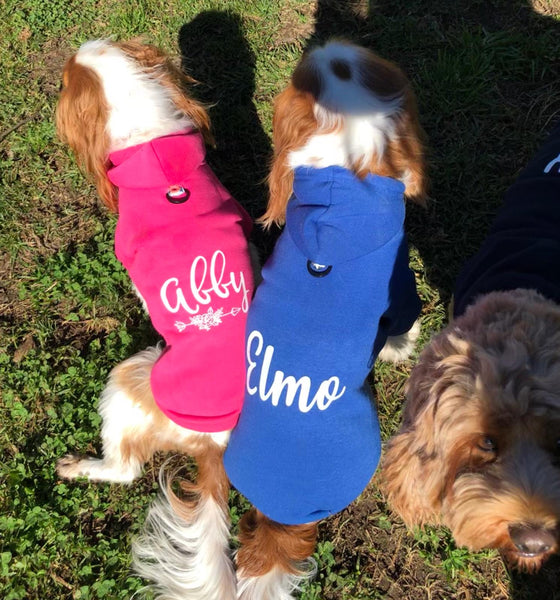 Personalized Hoodies (with slit for harness)