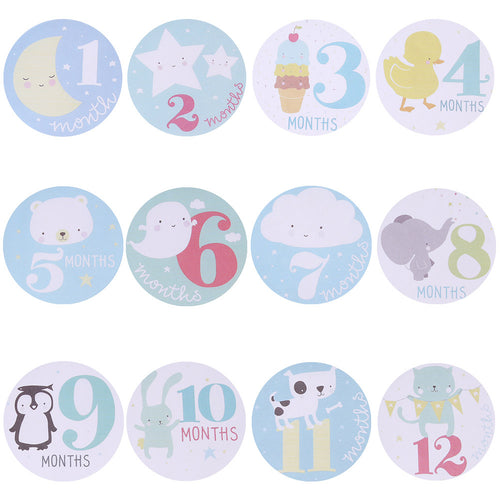 Bump Closet Monthly Photograph Stickers Month 1-12 Milestone