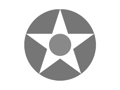 Group Commander (Renewal)