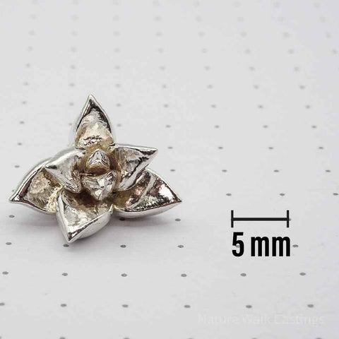 Succulent Casting 5 mm Size Reference