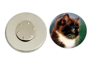 Magnetic Pin Back | Brown and white cat | Badges and Buttons Club